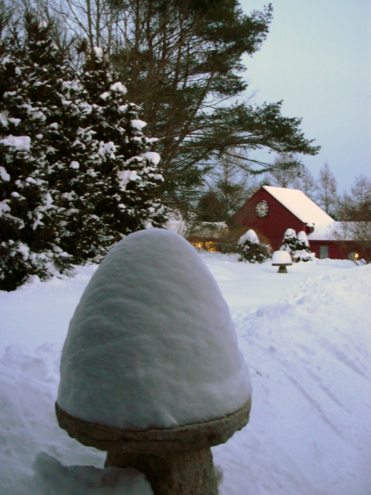 Photo From 2008 Snowstorm