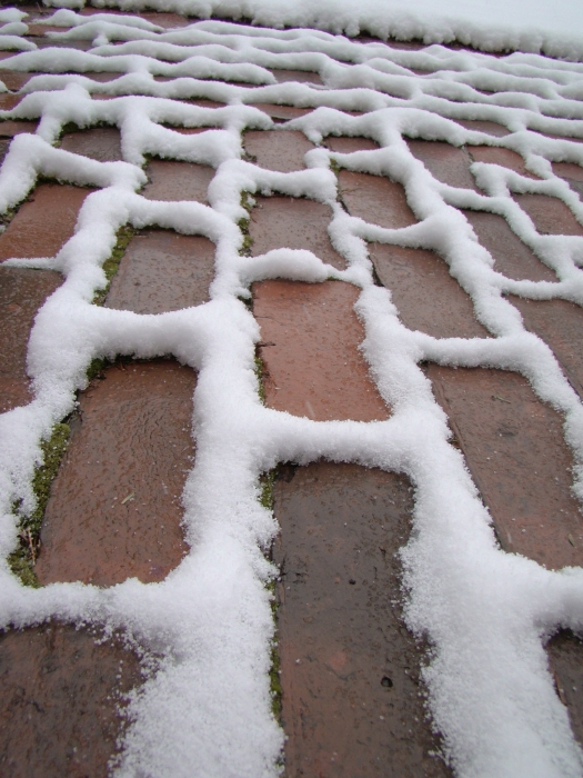Fresh Snow on Bricks